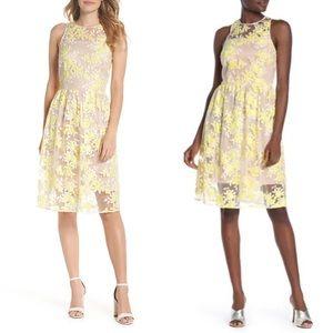 NWT Trina Turk Arroyo Lace Dress
